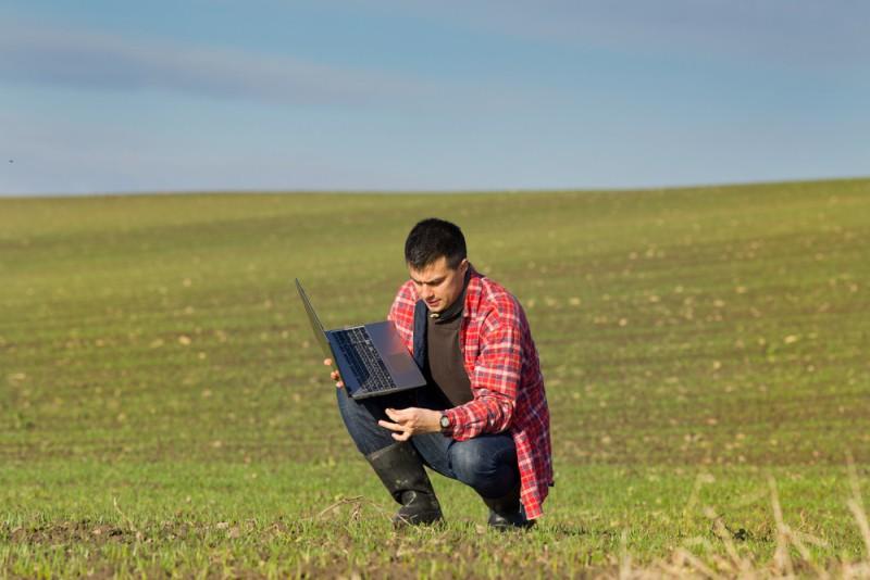 Экологический мониторинг. Экологические изыскания